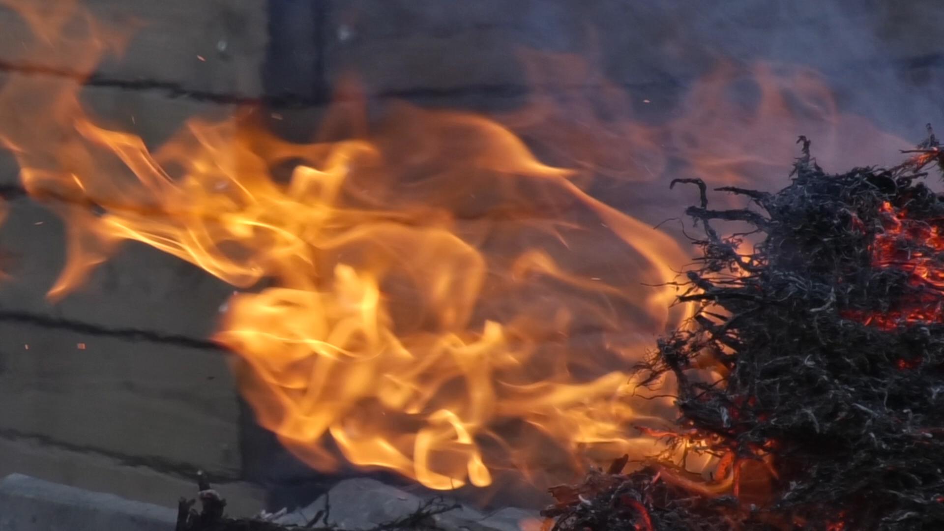 NOU REPORTATGE: Arribada de la Flama del Canigó
