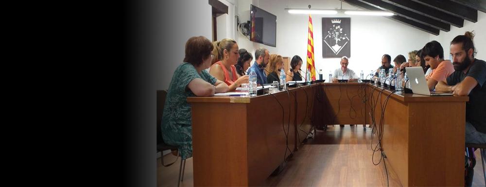 ERC presentarà a Ple una moció de rebuig a la resolució de la JEC respecte a Torra i Junqueras.